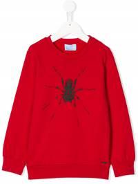 Lanvin Enfant - толстовка с принтом паука 696JX566930963680000