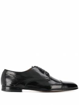 Doucal's - туфли на шнуровке 365CAPRPF055NN669355