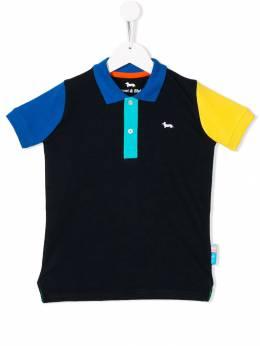 Harmont & Blaine Junior - рубашка-поло в стиле колор-блок JL669956005980000000