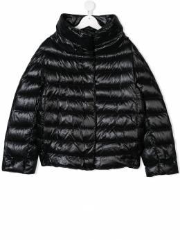 Herno Kids TEEN concealed fastening padded jacket PI0040G12017