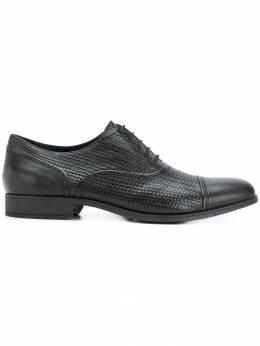 Geox - ботинки-оксфорды с плетеной отделкой 5FC69S89C99999095353