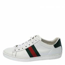 Gucci White Leather Ace Web Detail Lace Up Sneakers Size 37 236021