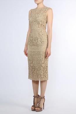 Платье-футляр из кружева Dolce&Gabbana 599182666